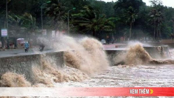 Các tỉnh ven biển Quảng Ninh-Quảng Ngãi chủ động ứng phó bão số 1