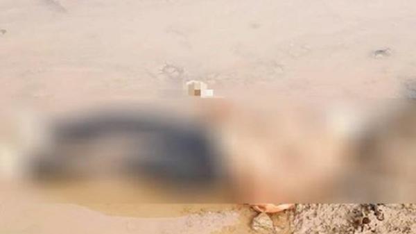 T.h.i t.h.ể nữ giới được tìm thấy bên bờ sông là giáo viên tiểu học