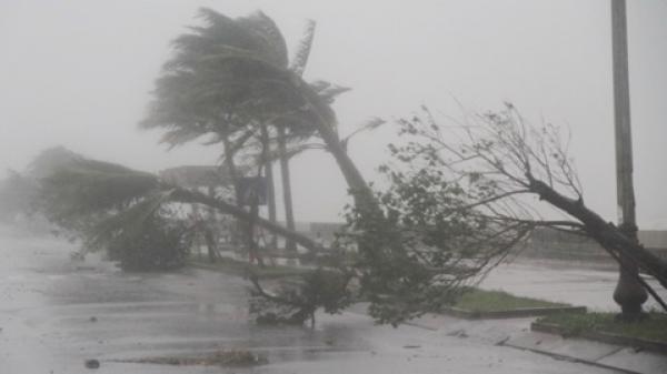 Thủ tướng yêu cầu hỏa tốc tập trung ứng phó với bão số 5