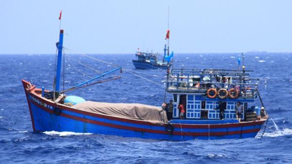 Quảng Ngãi: Một ngư dân t.ử nạn khi đ.ánh bắt hải sản trên biển