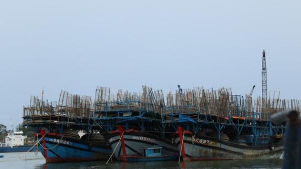 Nỗ lực cứu tàu câu mực Quảng Nam bị chìm trên biển