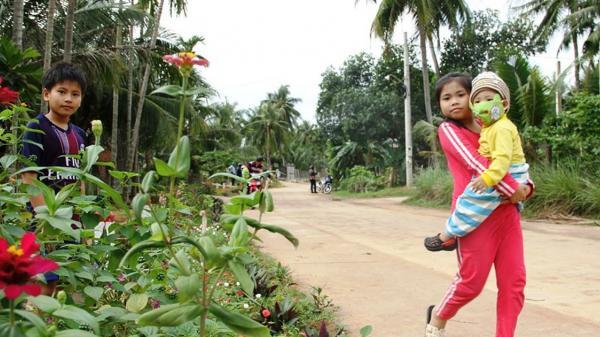 """Cả làng """"xin"""" hoa về trồng, đường quê Bình Định đẹp như tranh họa"""