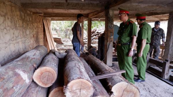 Đắk Lắk: Phát hiện một xưởng gỗ tàng trữ hơn 8 m3 gỗ lậu