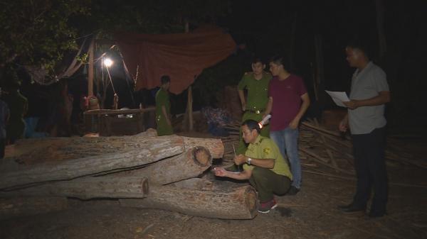 Đắk Lắk: Phát hiện một xưởng cưa hoạt động không phép, tập kết hơn 12m3 gỗ lậu