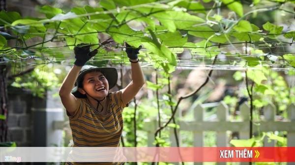 Kon Tum: Những doanh nhân 9X bỏ phố lên Măng Đen khởi nghiệp