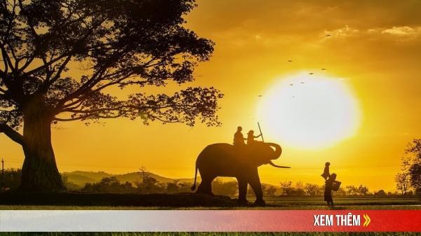 """""""Gia đình đẹp nhất thế giới"""" thuộc về nhiếp ảnh gia Việt Nam"""