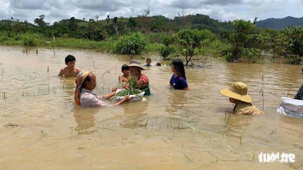 Đắk Lắk: Hồ thủy lợi hơn 11 năm chưa đền bù cho dân đã gây ngập 800ha