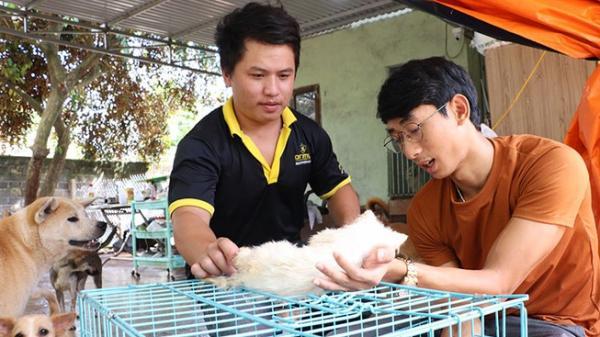Biệt đội giải cứu chó mèo ở Đắk Lắk