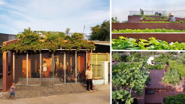 Ngôi nhà ở Quảng Ngãi vượt hơn 1400 đối thủ trên thế giới để trở thành dự án Kiến trúc của năm