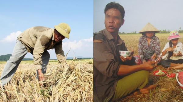 """""""Bố tôi là nông dân, chẳng có gì xấυ hổ, nghề nào chẳng là nghề!"""""""