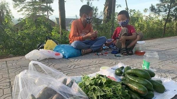 Xót xa 3 đứa trẻ bán rau vỉa hè ở Đà Lạt